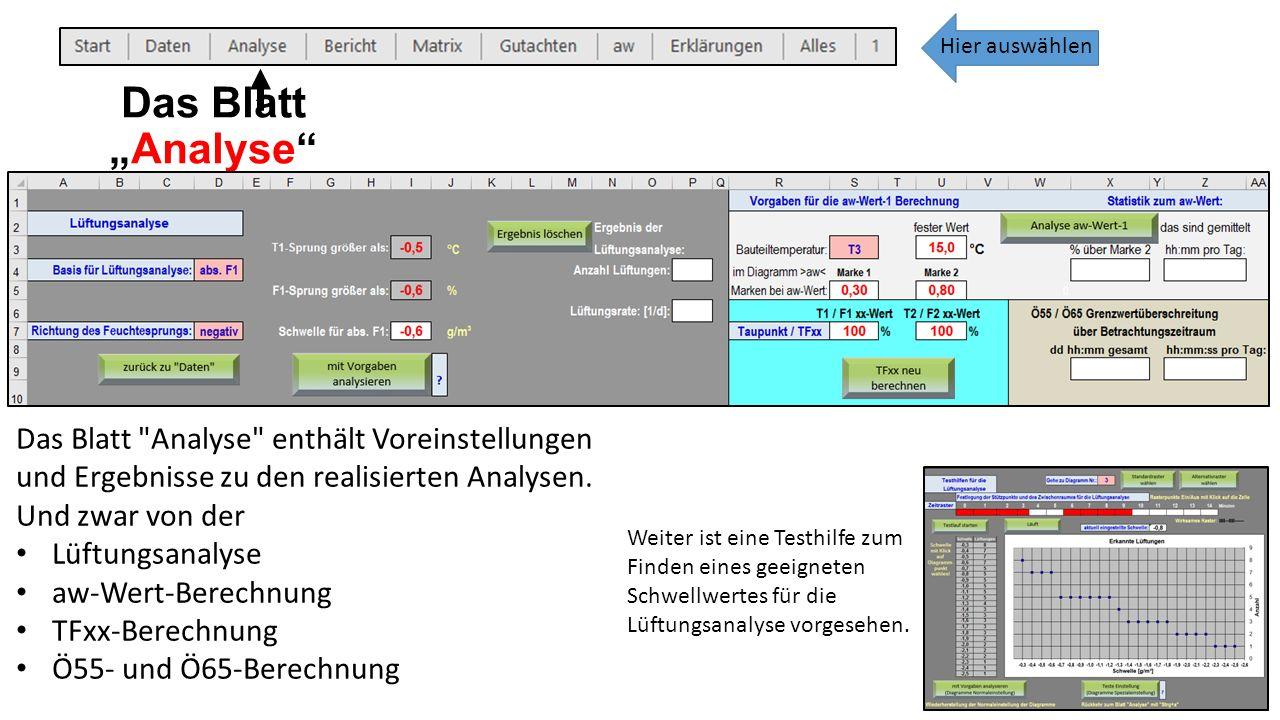 """Das Blatt """"Analyse Das Blatt Analyse enthält Voreinstellungen und Ergebnisse zu den realisierten Analysen."""