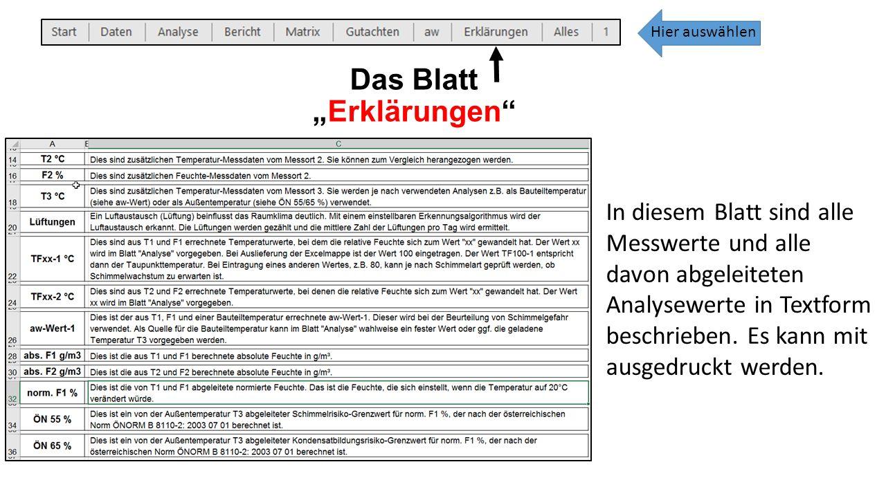 """Das Blatt """"Erklärungen In diesem Blatt sind alle Messwerte und alle davon abgeleiteten Analysewerte in Textform beschrieben."""