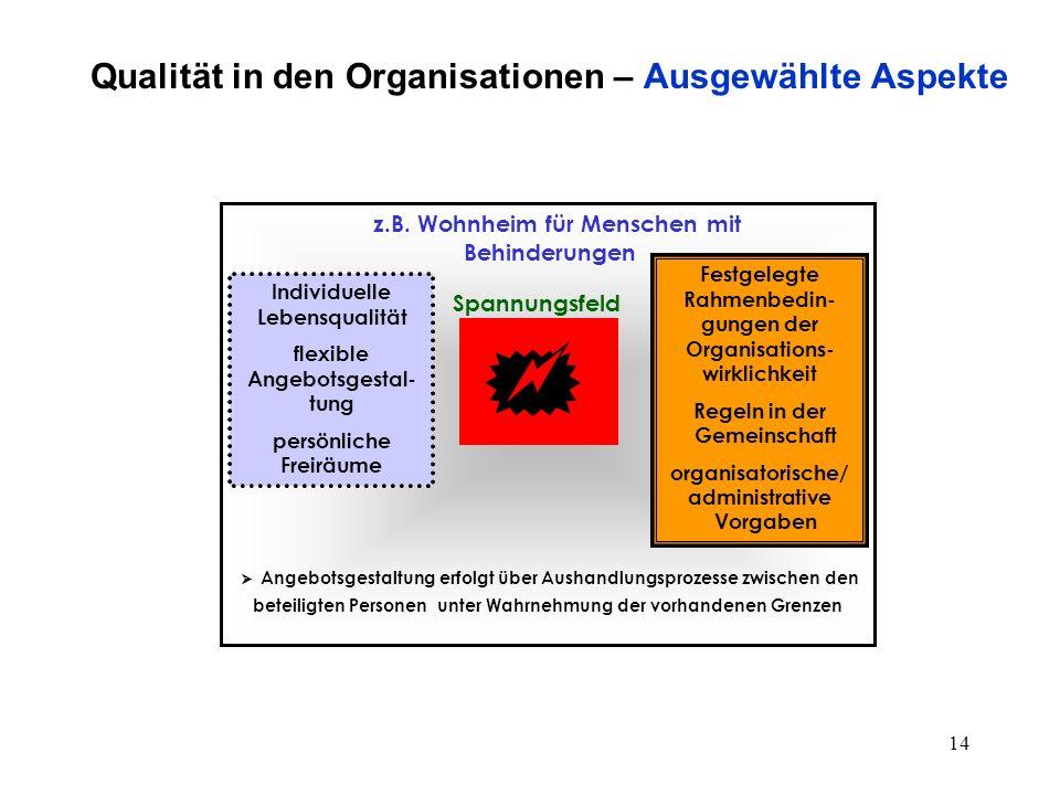 13 Qualität in den Organisationen – Ausgewählte Aspekte Prozeßmanagement: Potentiale innerhalb der Einrichtungsstruktur  z.B.