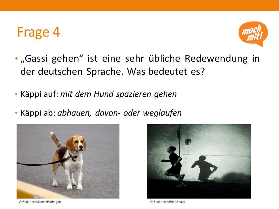 """Frage 4 """"Gassi gehen ist eine sehr übliche Redewendung in der deutschen Sprache."""