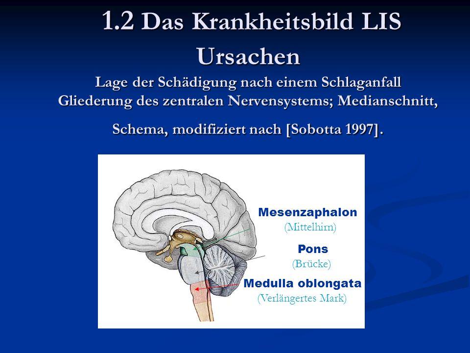 Mesenzaphalon (Mittelhirn) Pons (Brücke) Medulla oblongata (Verlängertes Mark) 1.2 Das Krankheitsbild LIS Ursachen Lage der Schädigung nach einem Schlaganfall Gliederung des zentralen Nervensystems; Medianschnitt, Schema, modifiziert nach [Sobotta 1997].