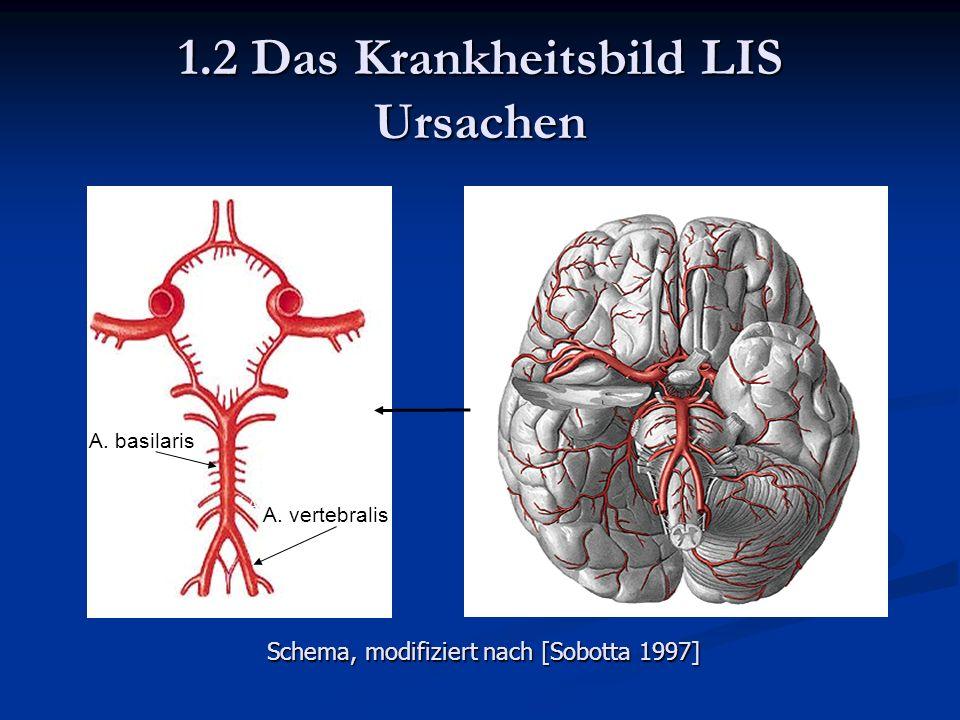 1.2 Das Krankheitsbild LIS Ursachen A. basilaris A.