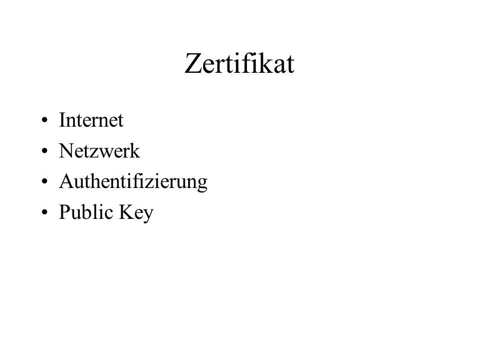 Zertifikat Internet Netzwerk Authentifizierung Public Key