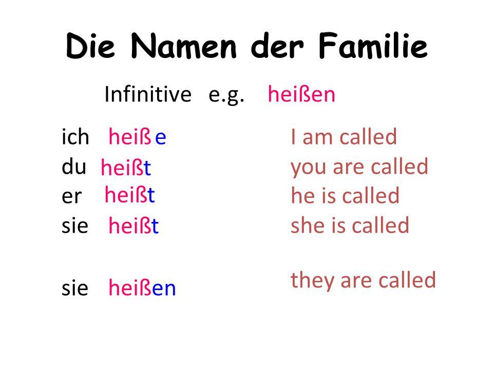 Die Namen der Familie ich du er sie Infinitive e.g.
