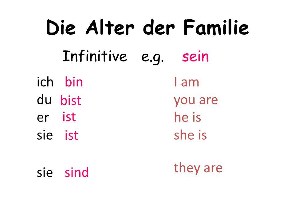 Die Alter der Familie ich du er sie Infinitive e.g.