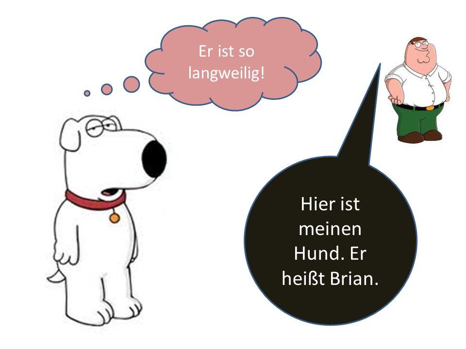 Hier ist meinen Hund. Er heißt Brian. Er ist so langweilig!