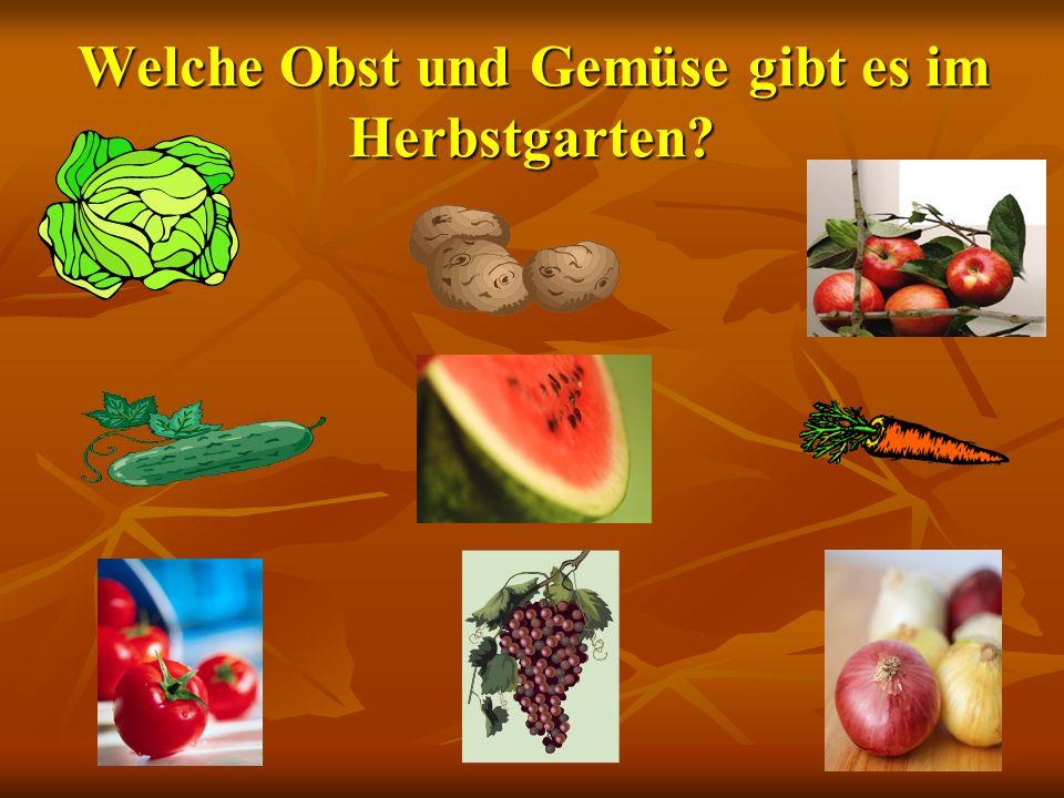 - Wir haben eine Obst- und Gemüsetabelle gemacht. - Wir haben eine Obst- und Gemüsetabelle gemacht.