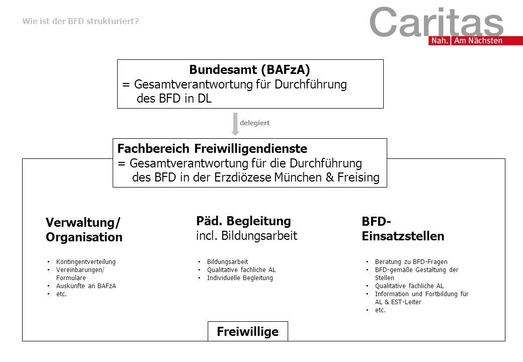 Wie ist der BFD strukturiert.