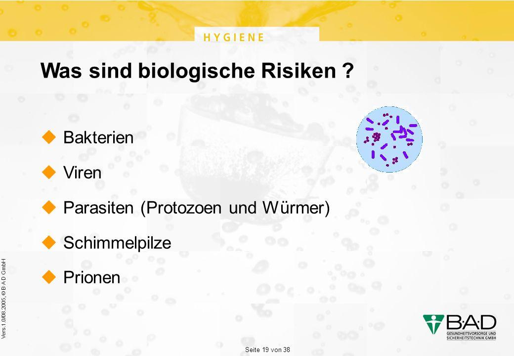 Seite 19 von 38 Vers.1.0/08.2005, © B·A·D GmbH Was sind biologische Risiken .