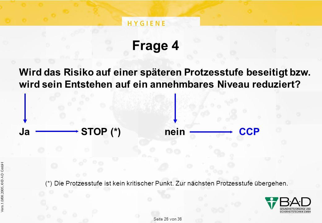 Seite 28 von 38 Vers.1.0/08.2005, © B·A·D GmbH Frage 4 Wird das Risiko auf einer späteren Protzesstufe beseitigt bzw.