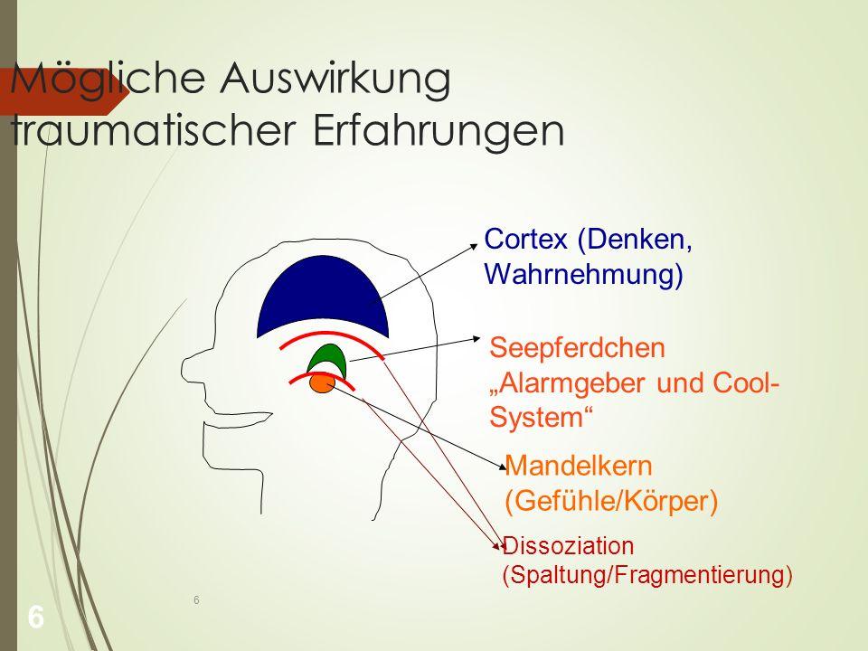 """6 Mögliche Auswirkung traumatischer Erfahrungen Cortex (Denken, Wahrnehmung) Mandelkern (Gefühle/Körper) Seepferdchen """"Alarmgeber und Cool- System Dissoziation (Spaltung/Fragmentierung) 6"""