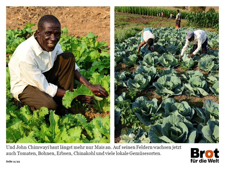 Seite 11/22 Und John Chimwayi baut längst mehr nur Mais an.