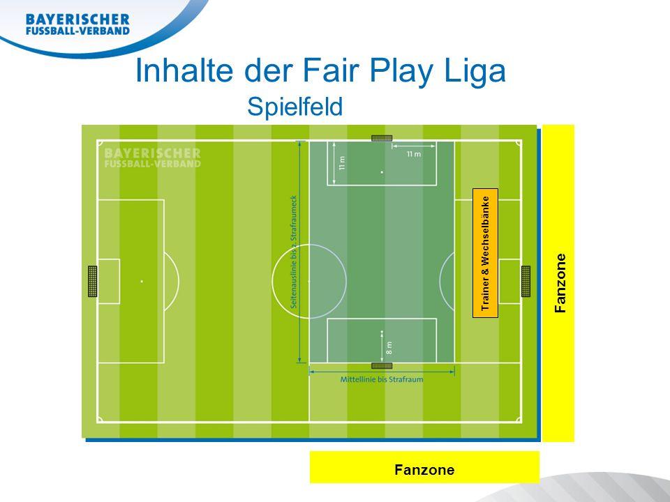 Inhalte der Fair Play Liga Spielfeld Fanzone Trainer & Wechselbänke