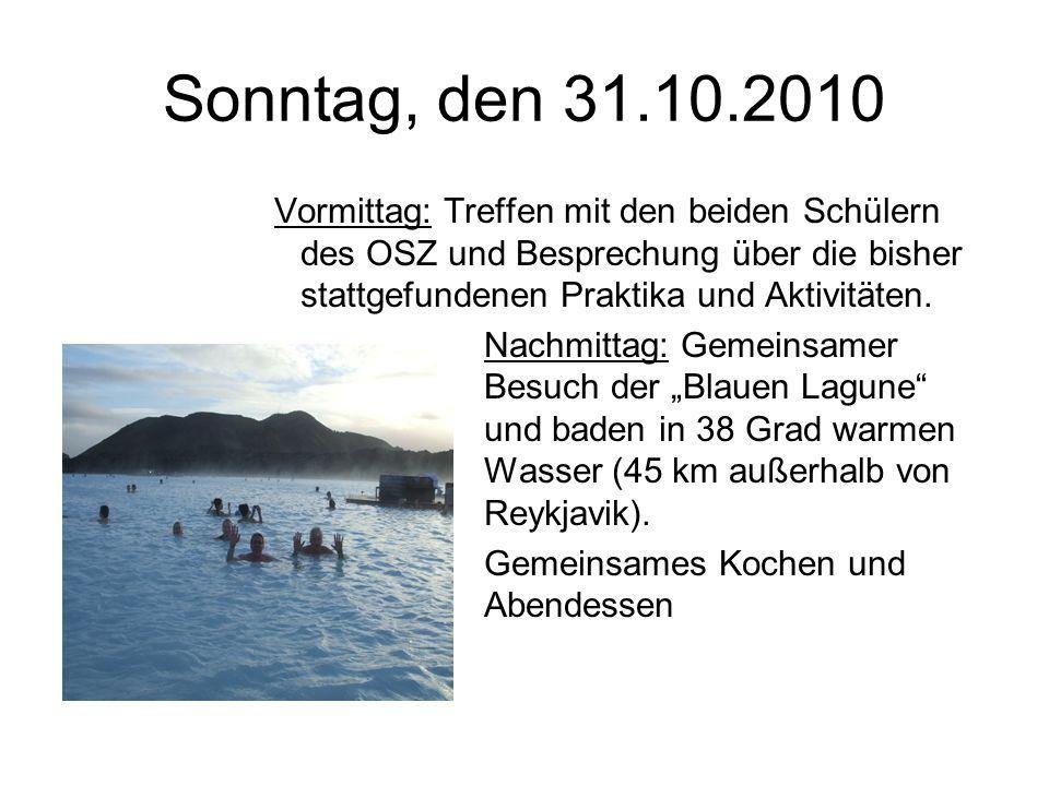 Sonntag, den 31.10.2010 Vormittag: Treffen mit den beiden Schülern des OSZ und Besprechung über die bisher stattgefundenen Praktika und Aktivitäten.