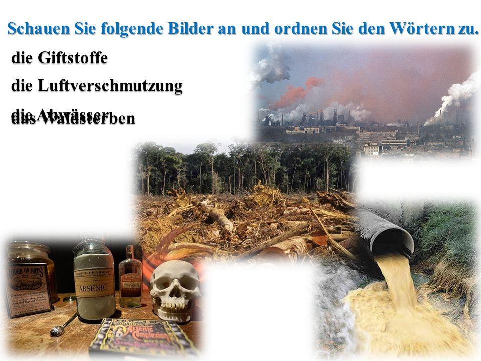 die Luftverschmutzung die G GG Giftstoffe die Abwässer das Waldsterben