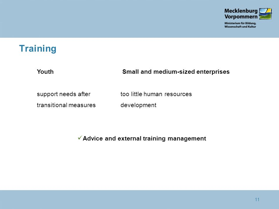 11 Training Youth Small and medium-sized enterprises support needs aftertoo little human resources transitional measuresdevelopment Advice and external training management