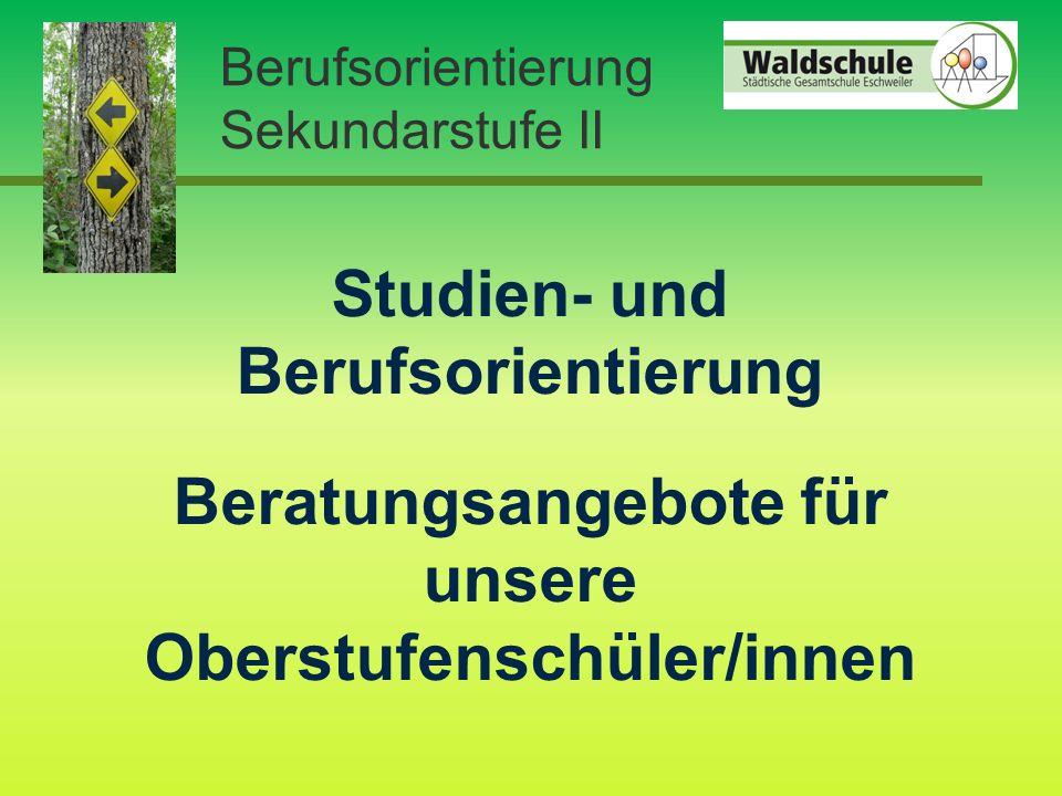 Berufsorientierung Sekundarstufe II Studien- und Berufsorientierung Beratungsangebote für unsere Oberstufenschüler/innen