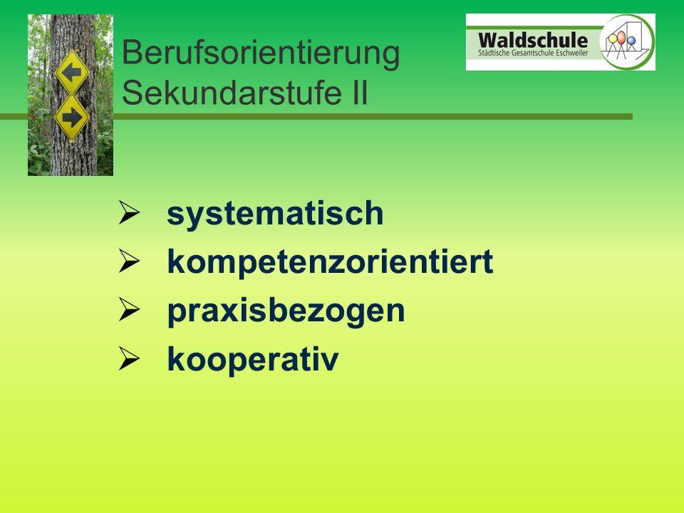 Berufsorientierung Sekundarstufe II  systematisch  kompetenzorientiert  praxisbezogen  kooperativ