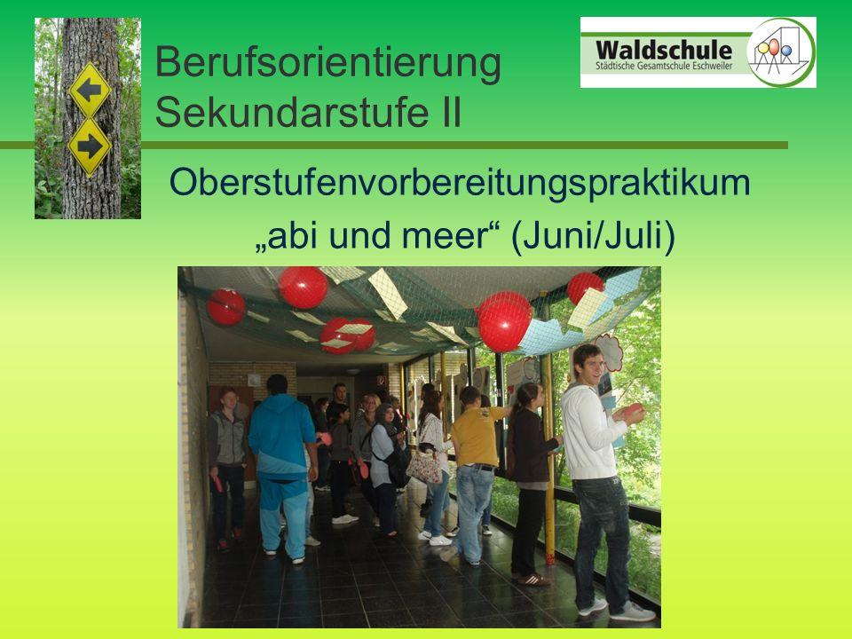 "Oberstufenvorbereitungspraktikum ""abi und meer (Juni/Juli) Berufsorientierung Sekundarstufe II"