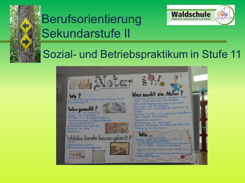 Berufsorientierung Sekundarstufe II Sozial- und Betriebspraktikum in Stufe 11