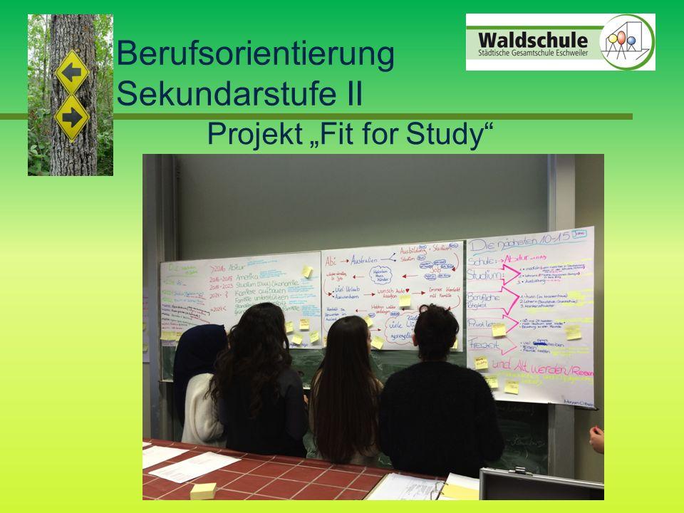 "Lerngruppenmanagement Berufsorientierung Sekundarstufe II Projekt ""Fit for Study"
