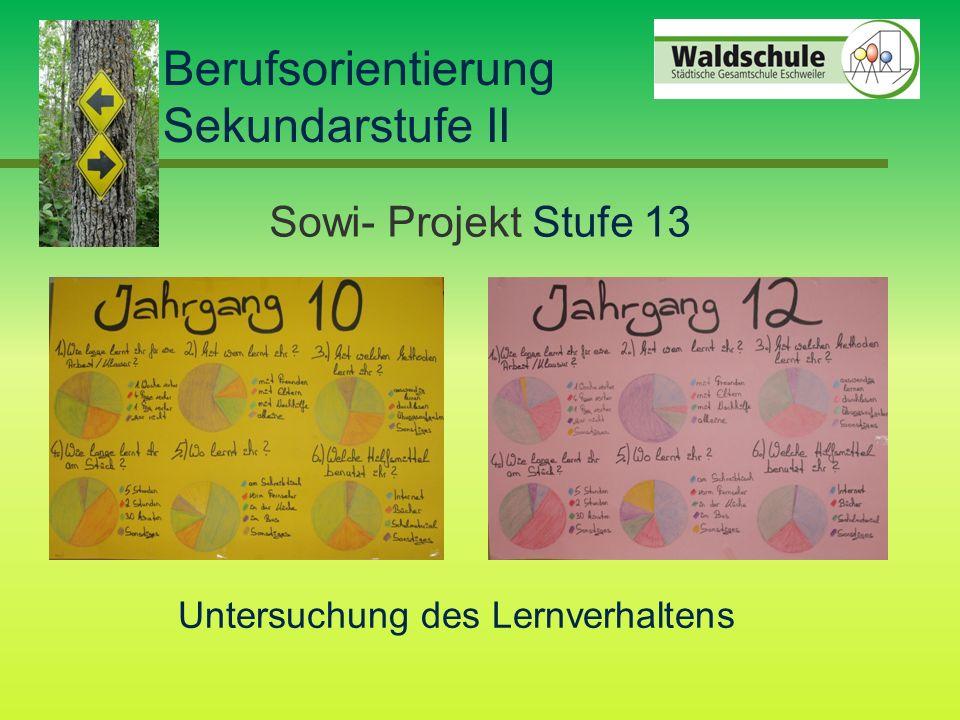 Berufsorientierung Sekundarstufe II Sowi- Projekt Stufe 13 Untersuchung des Lernverhaltens
