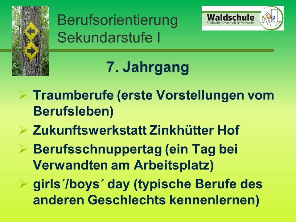 Berufsorientierung Sekundarstufe I 7.