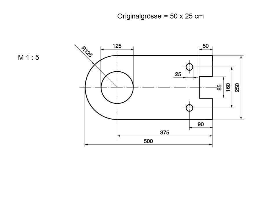 M 1 : 5 Originalgrösse = 50 x 25 cm