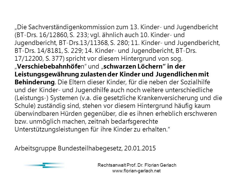 """""""Die Sachverständigenkommission zum 13. Kinder- und Jugendbericht (BT-Drs."""