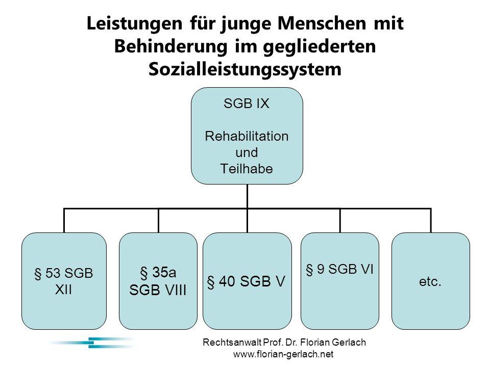 Leistungen für junge Menschen mit Behinderung im gegliederten Sozialleistungssystem Rechtsanwalt Prof.