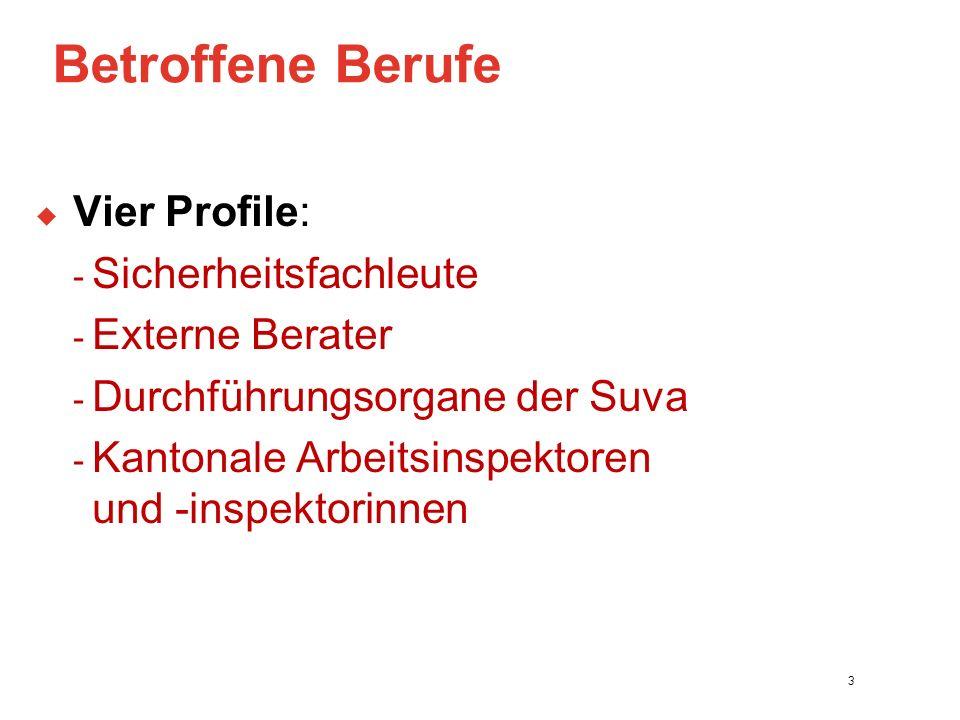 Betroffene Berufe  Vier Profile: - Sicherheitsfachleute - Externe Berater - Durchführungsorgane der Suva - Kantonale Arbeitsinspektoren und -inspektorinnen 3