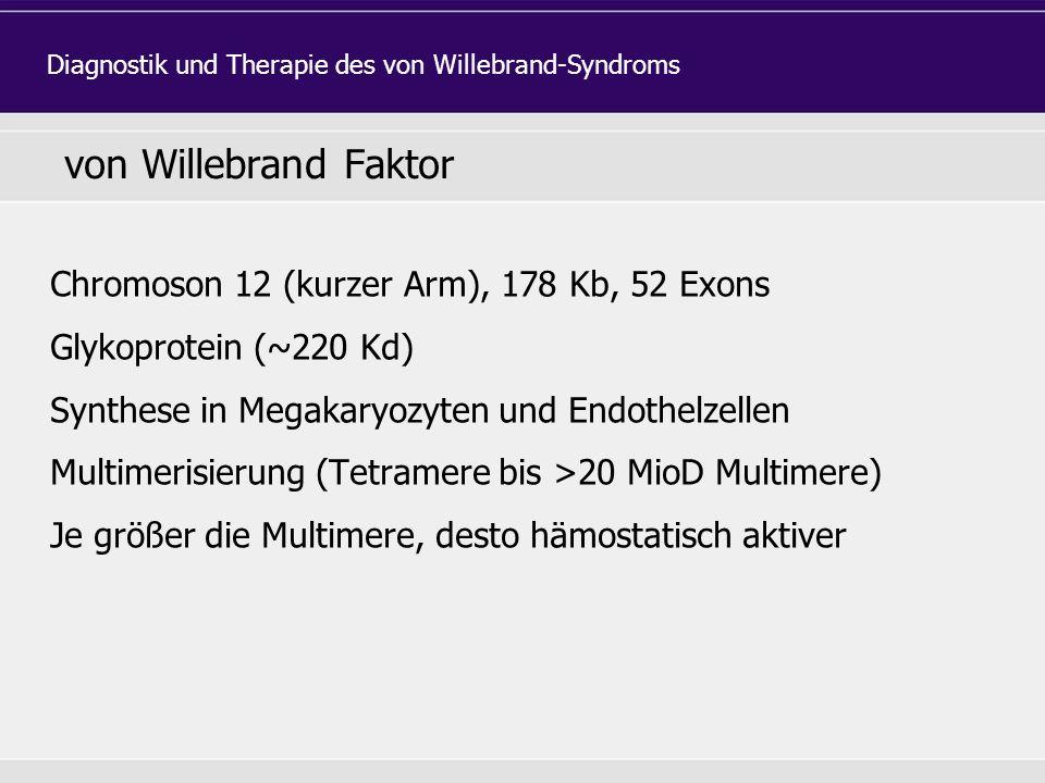von Willebrand Faktor Chromoson 12 (kurzer Arm), 178 Kb, 52 Exons Glykoprotein (~220 Kd) Synthese in Megakaryozyten und Endothelzellen Multimerisierung (Tetramere bis >20 MioD Multimere) Je größer die Multimere, desto hämostatisch aktiver Diagnostik und Therapie des von Willebrand-Syndroms