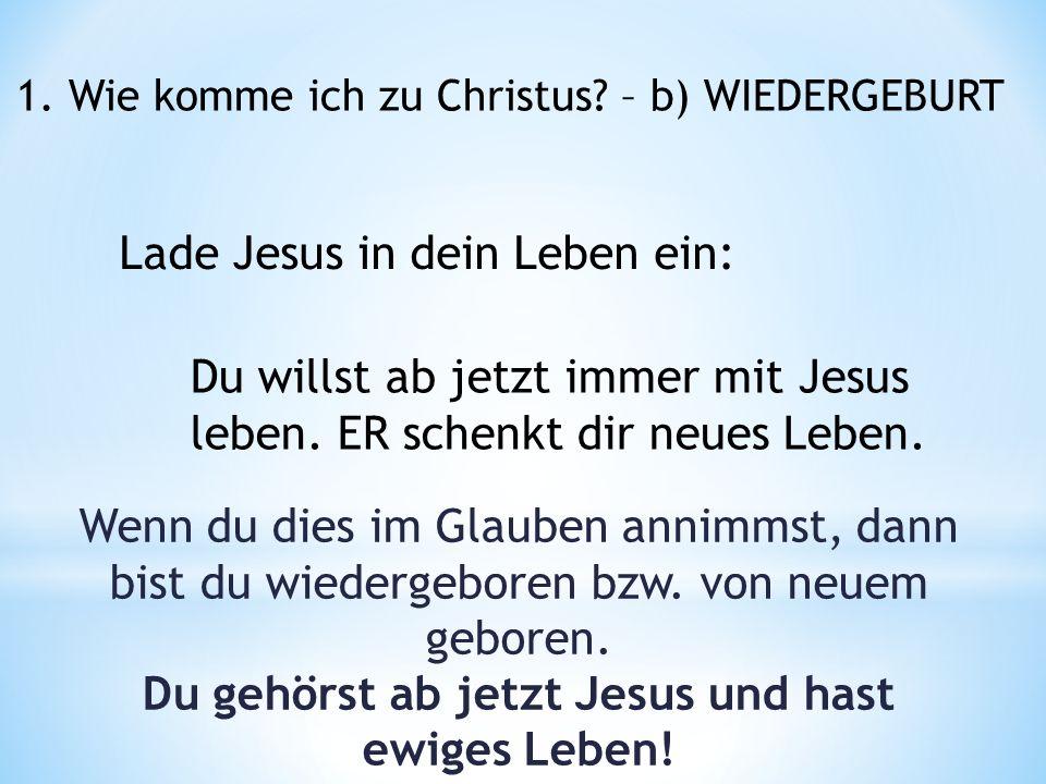 Lade Jesus in dein Leben ein: 1. Wie komme ich zu Christus.