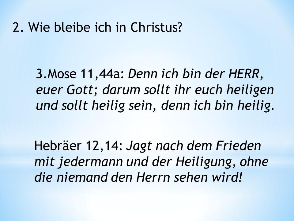 2. Wie bleibe ich in Christus.