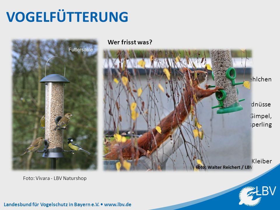 Landesbund für Vogelschutz in Bayern e.V. www.lbv.de Wer frisst was.