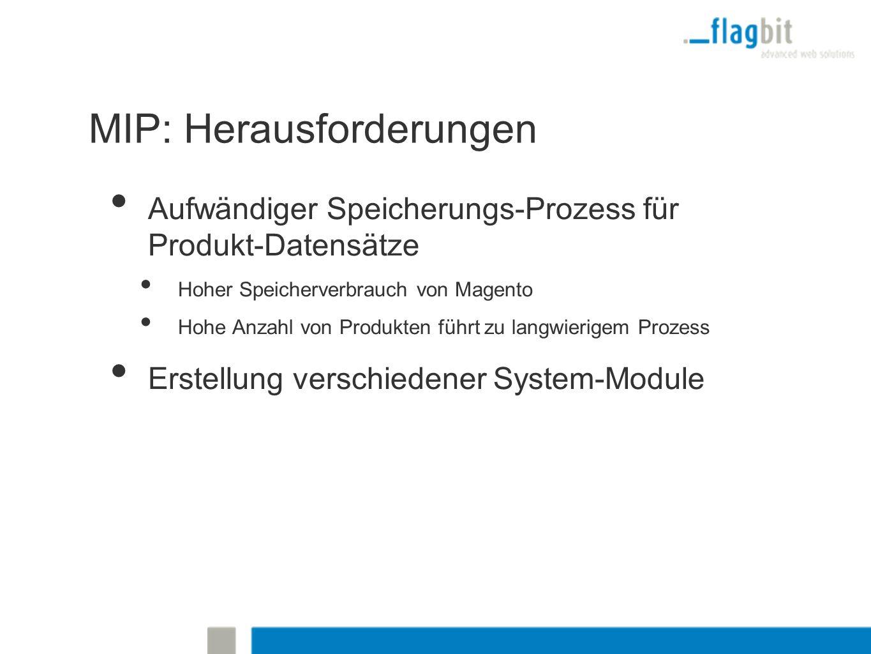 MIP: Herausforderungen Aufwändiger Speicherungs-Prozess für Produkt-Datensätze Hoher Speicherverbrauch von Magento Hohe Anzahl von Produkten führt zu langwierigem Prozess Erstellung verschiedener System-Module