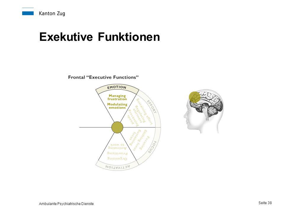 Ambulante Psychiatrische Dienste Seite 38 Exekutive Funktionen
