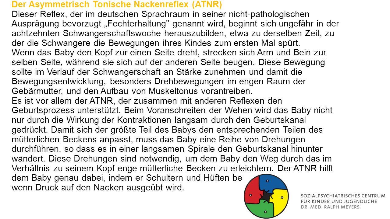 """Der Asymmetrisch Tonische Nackenreflex (ATNR) Dieser Reflex, der im deutschen Sprachraum in seiner nicht-pathologischen Ausprägung bevorzugt """"Fechterhaltung genannt wird, beginnt sich ungefähr in der achtzehnten Schwangerschaftswoche herauszubilden, etwa zu derselben Zeit, zu der die Schwangere die Bewegungen ihres Kindes zum ersten Mal spürt."""