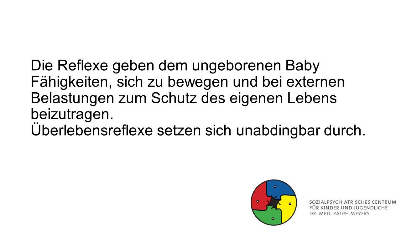 Die Reflexe geben dem ungeborenen Baby Fähigkeiten, sich zu bewegen und bei externen Belastungen zum Schutz des eigenen Lebens beizutragen.
