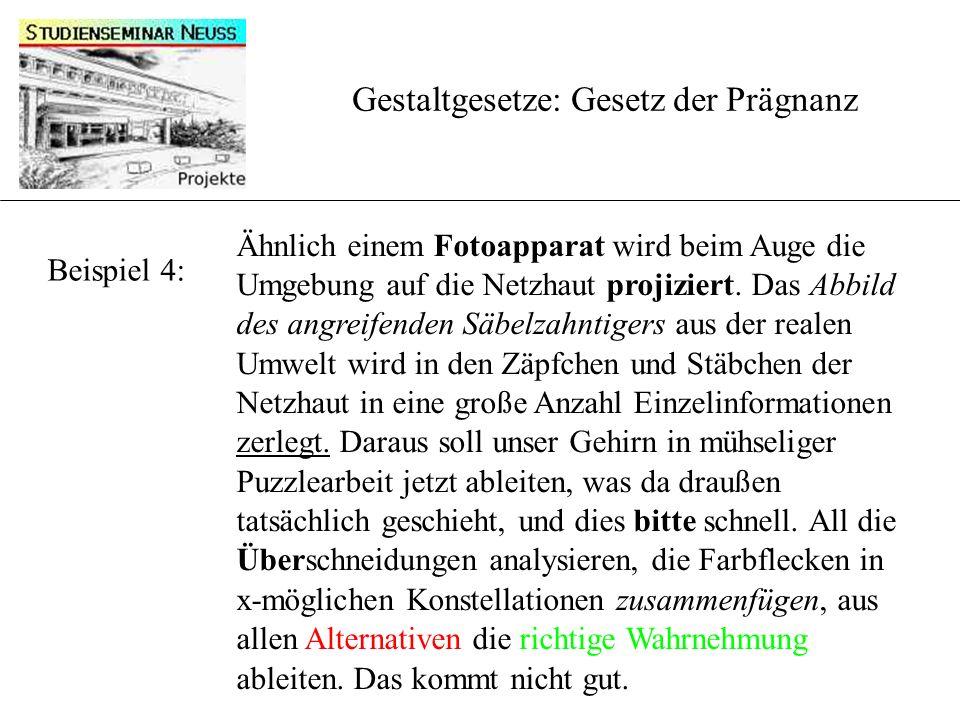Beispiel 4: Gestaltgesetze: Gesetz der Prägnanz Ähnlich einem Fotoapparat wird beim Auge die Umgebung auf die Netzhaut projiziert.