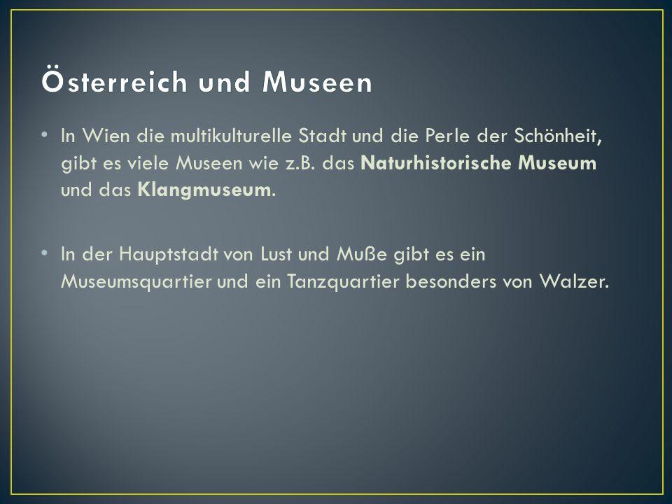 In Wien die multikulturelle Stadt und die Perle der Schönheit, gibt es viele Museen wie z.B.