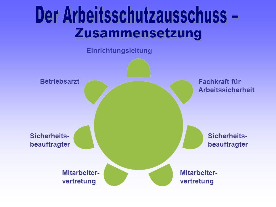 Sicherheits- beauftragter Betriebsarzt Einrichtungsleitung Fachkraft für Arbeitssicherheit Sicherheits- beauftragter Mitarbeiter- vertretung