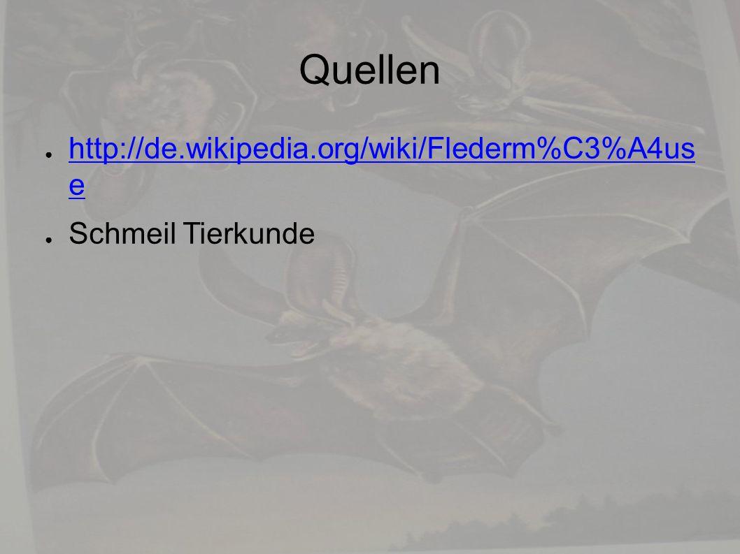 Quellen ● http://de.wikipedia.org/wiki/Flederm%C3%A4us e http://de.wikipedia.org/wiki/Flederm%C3%A4us e ● Schmeil Tierkunde