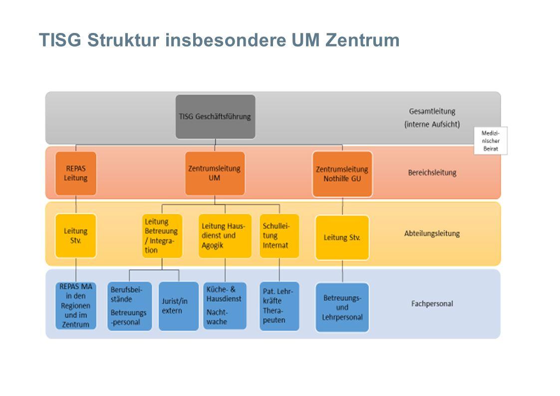 TISG Struktur insbesondere UM Zentrum