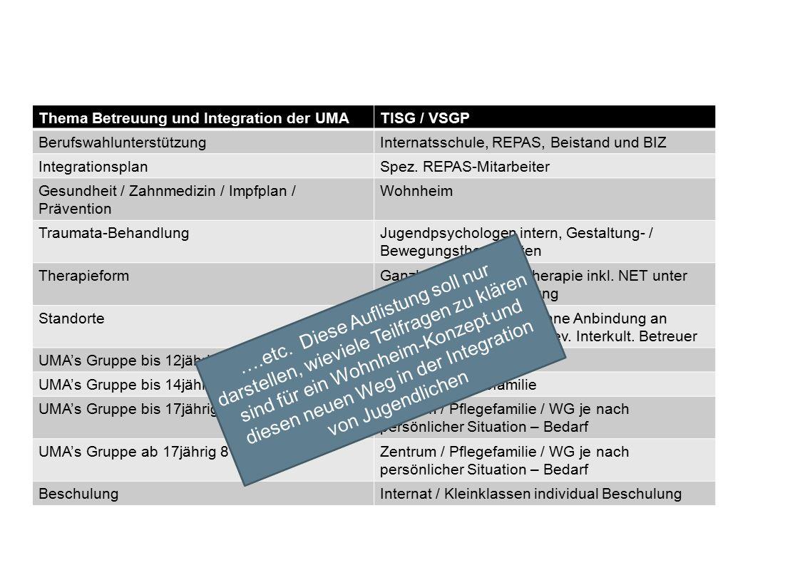 Thema Betreuung und Integration der UMATISG / VSGP BerufswahlunterstützungInternatsschule, REPAS, Beistand und BIZ IntegrationsplanSpez.