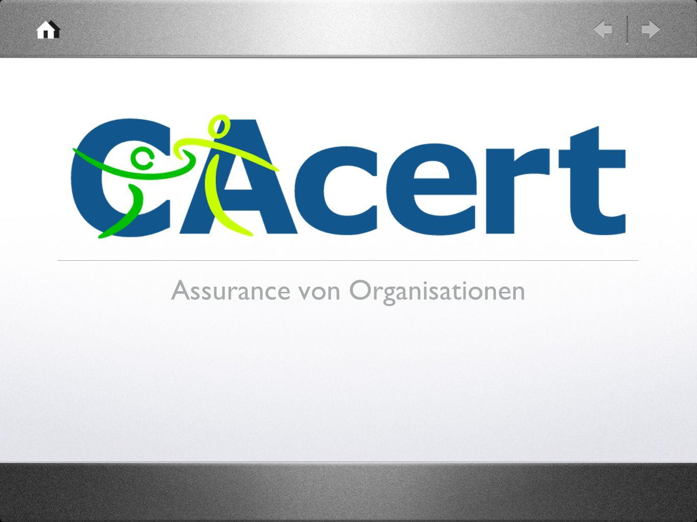 Assurance von Organisationen