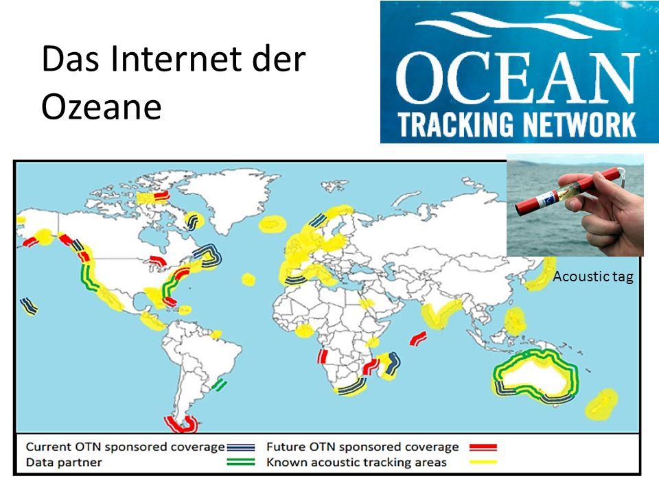Das Internet der Ozeane Acoustic tag