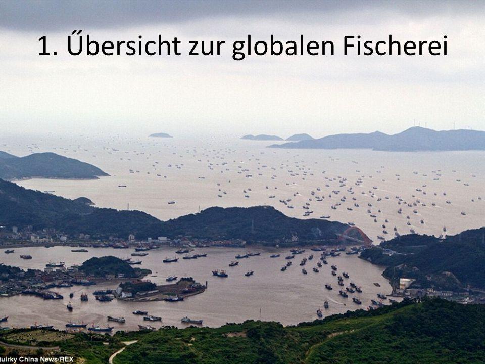 1. Űbersicht zur globalen Fischerei