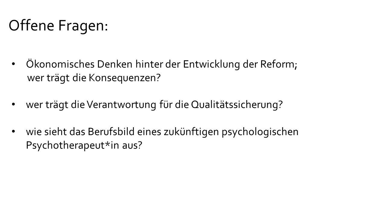 Offene Fragen: Ökonomisches Denken hinter der Entwicklung der Reform; wer trägt die Konsequenzen.