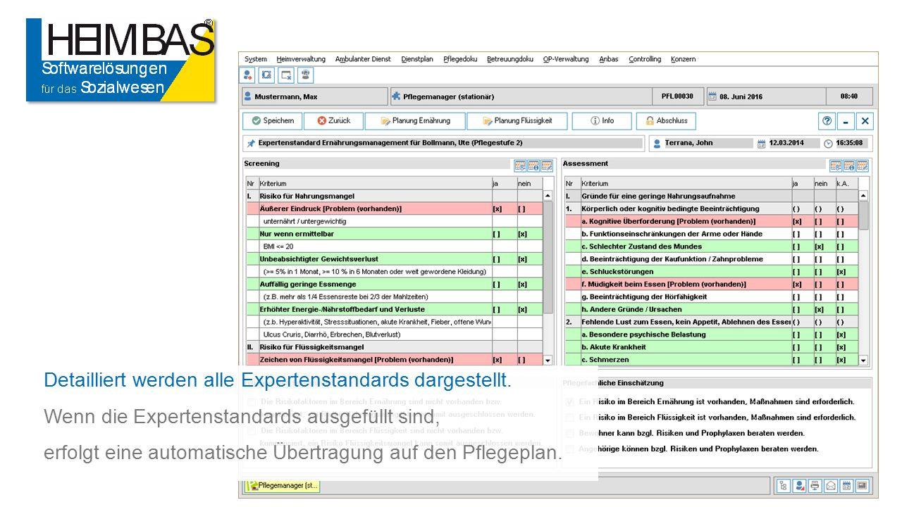 Detailliert werden alle Expertenstandards dargestellt.